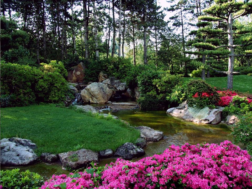 Jardin Japonais fleur