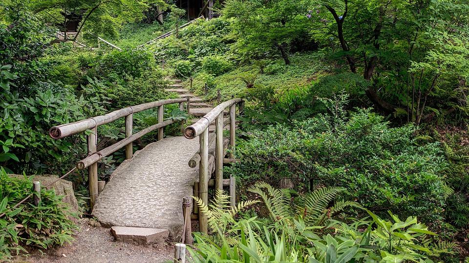 Jardin Japonais nature